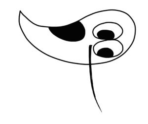 Рисуем птичку пошагово